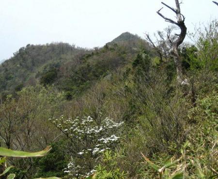 釈迦岳 062