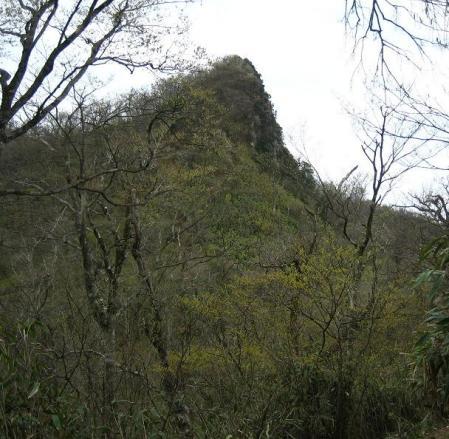 釈迦岳 175