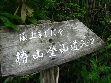 椿山 051