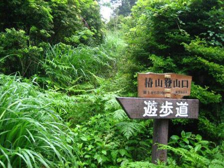 椿山 108