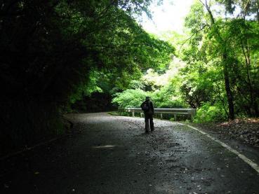 清水の山路 057