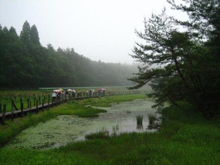 樫原湿原 013