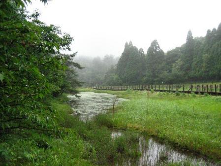樫原湿原 076
