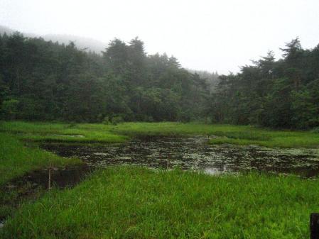 樫原湿原 012