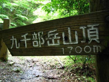 九千部岳の花 041
