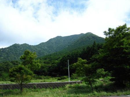 九千部岳の花 246