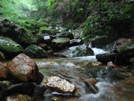 清水とから迫岳 059