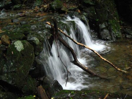 清水とから迫岳 058