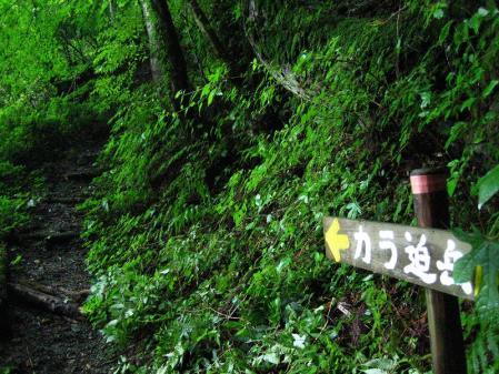清水とから迫岳 055