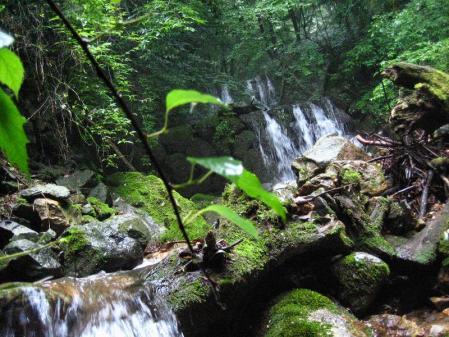 清水とから迫岳 077