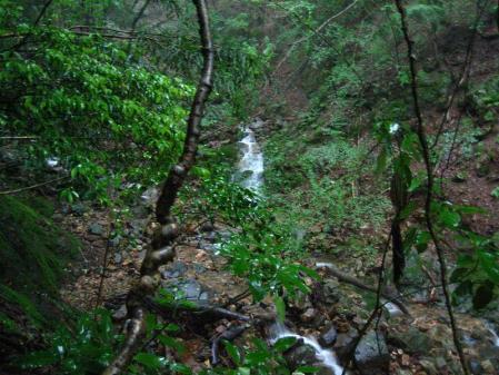 清水とから迫岳 099