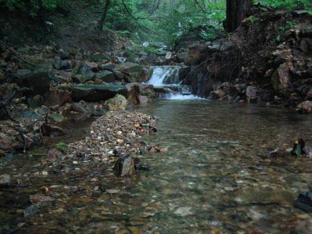 清水とから迫岳 091