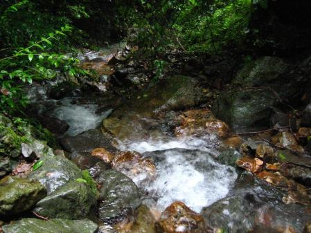 清水とから迫岳 085