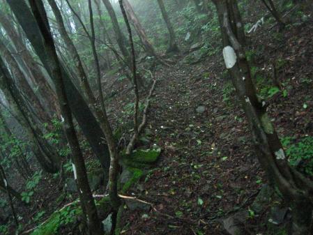 清水とから迫岳 198