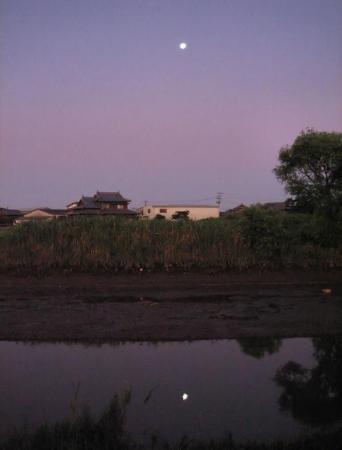 月太陽小岱山 142