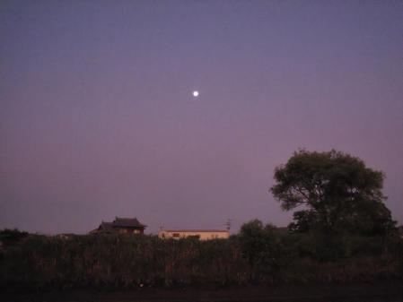 月太陽小岱山 135