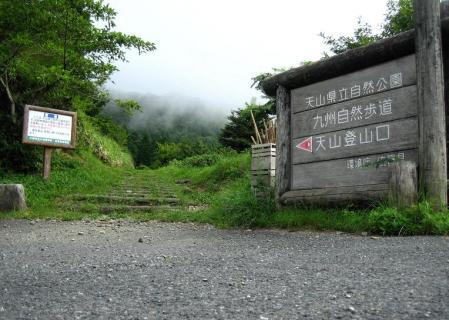 天山の花 雨 006