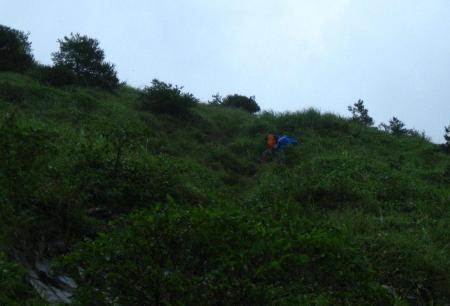 天山の花 雨 208