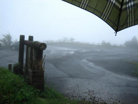 天山の花 雨 217