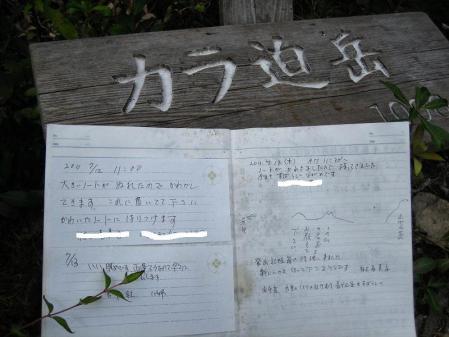 から迫嶽の白い釣舟草 077