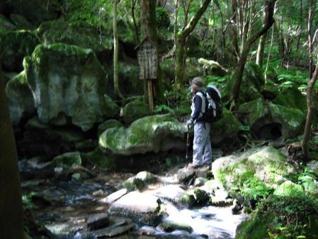 井原山 045