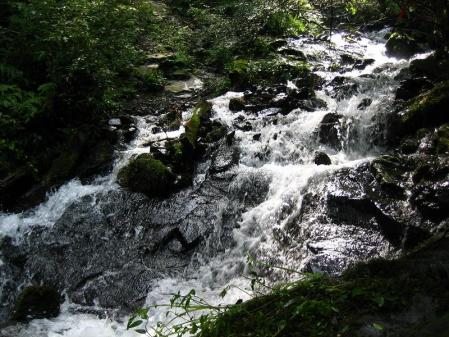 井原山 132