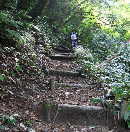 井原山 113