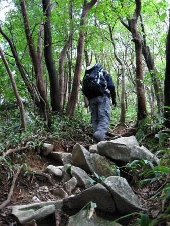 井原山 171