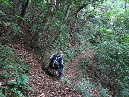 井原山 091