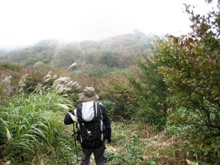 井原山 209