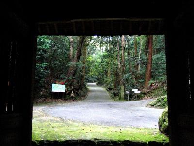秋雨の清水路 017