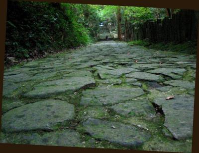 秋雨の清水路 025