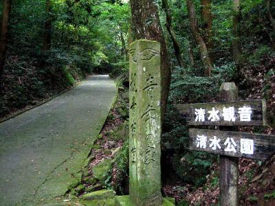 秋雨の清水路 020