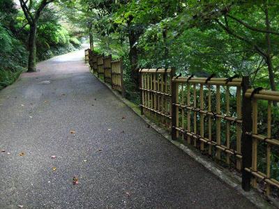 秋雨の清水路 064