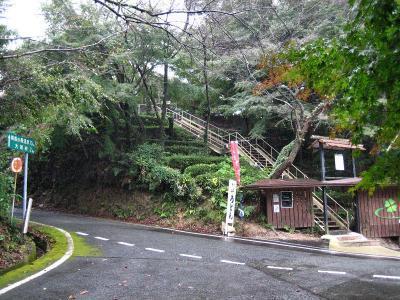 秋雨の清水路 082