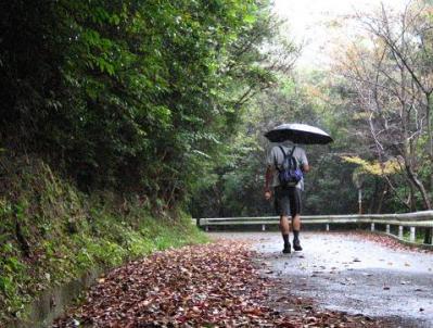 秋雨の清水路 089