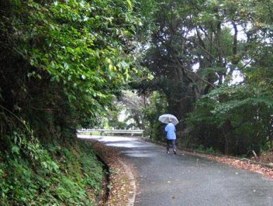秋雨の清水路 085