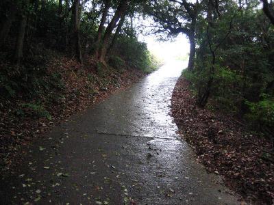 秋雨の清水路 141