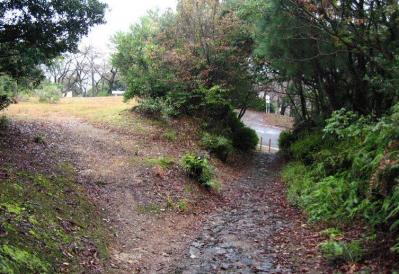秋雨の清水路 161
