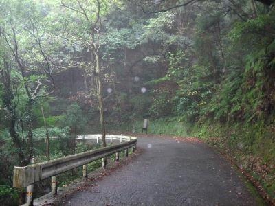 秋雨の清水路 209