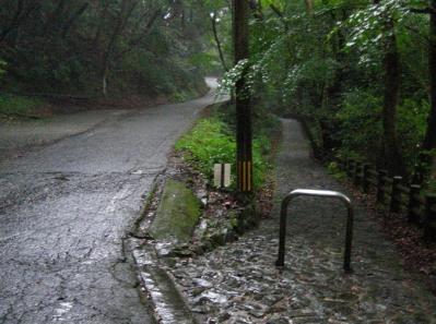 秋雨の清水路 227
