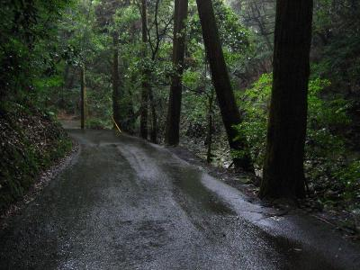 秋雨の清水路 217