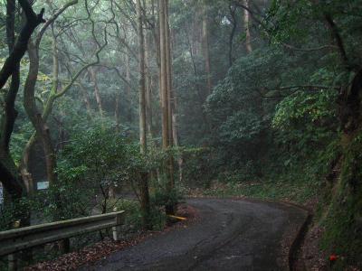秋雨の清水路 214
