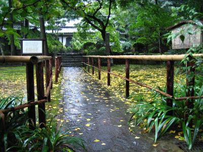 秋雨の清水路 239