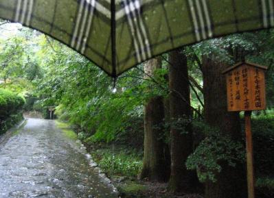 秋雨の清水路 235