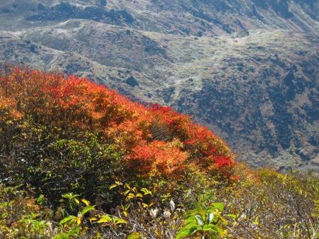 三俣山の紅葉 088