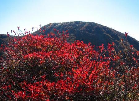 三俣山の紅葉 155