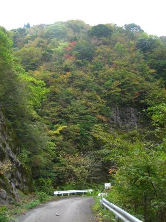 前津江村 110