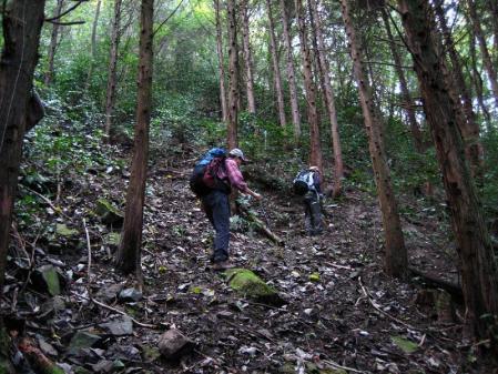 鹿嵐山 024