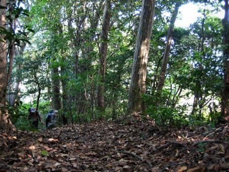 鹿嵐山 045